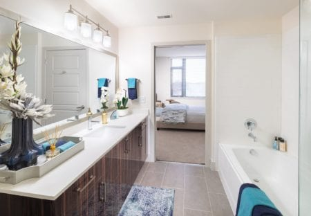 master bathroom at thayer and spring in silver spring maryland