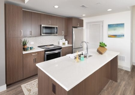 luxury apartment kitchen in silver spring at thayer and spring