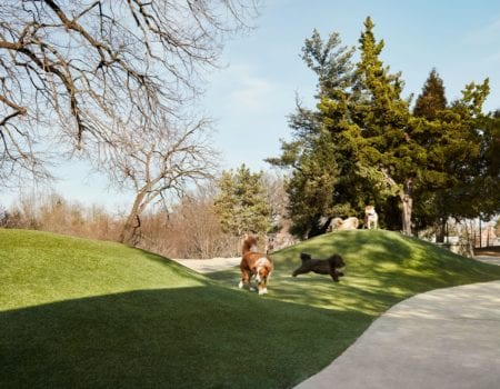 dog parks near thayer and spring in silver spring maryland